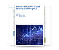 Harness the power of data to drive marketing ROI